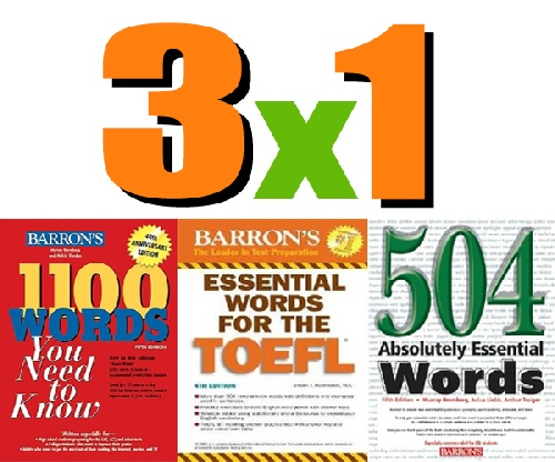 1100 Essential Words Pdf